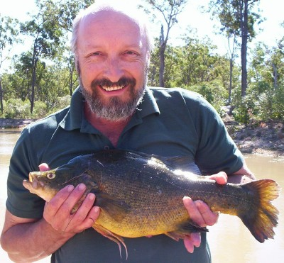 Lake Eyre Golden Perch1