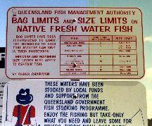 There are rules about how many fish (Bag limit) and size of the fish you catch in Queensland. Breaking these ruls will result in fines.